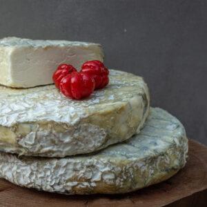 גבינת החודש